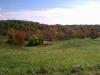 Fall Colors Ohio