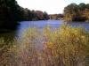 Fall Colors Ohio Lake