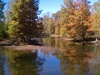 Strip mine lake