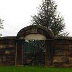 stonewall-crop-f