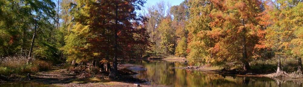 fall-10-11-fetured